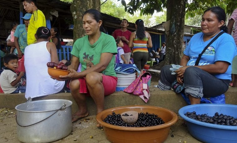 Farc indígenas Colombia