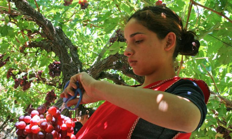 Lo que te falta saber de las mujeres en la agricultura