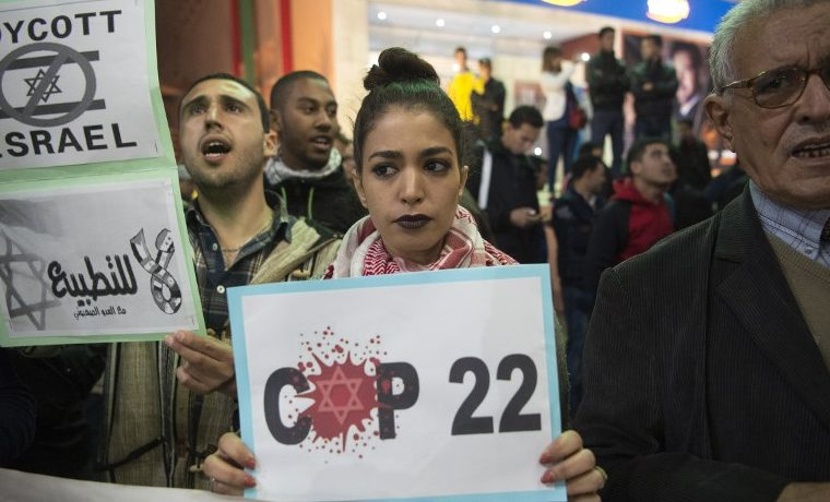 COP22. AFP PHOTO / FADEL SENNA