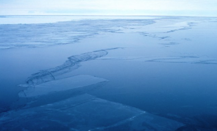 Cinco claves sobre los santuarios naturales en la Antártida