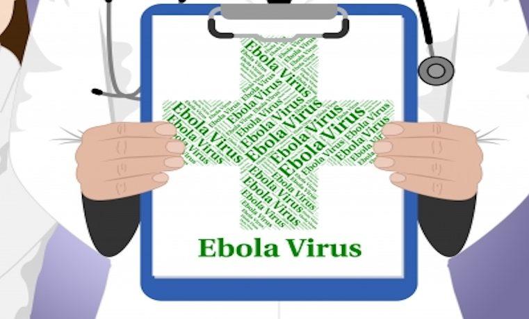 Retrato del Ébola, un virus que causó más de 11.000 muertos