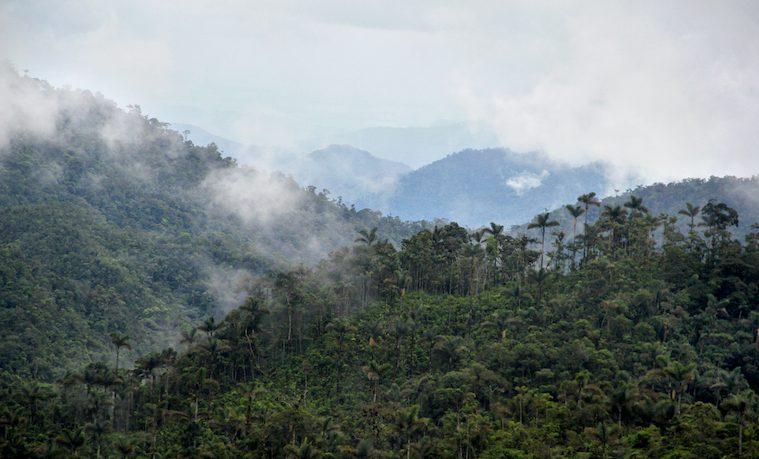 Llega a Caquetá la gran expedición de ciencia y conocimiento: Colombia Bio
