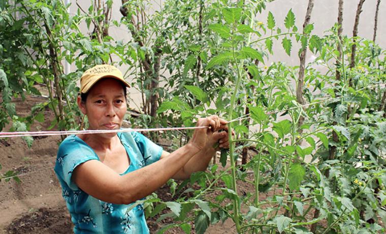 En El Salvador, las mujeres rurales plantan las semillas de la independencia
