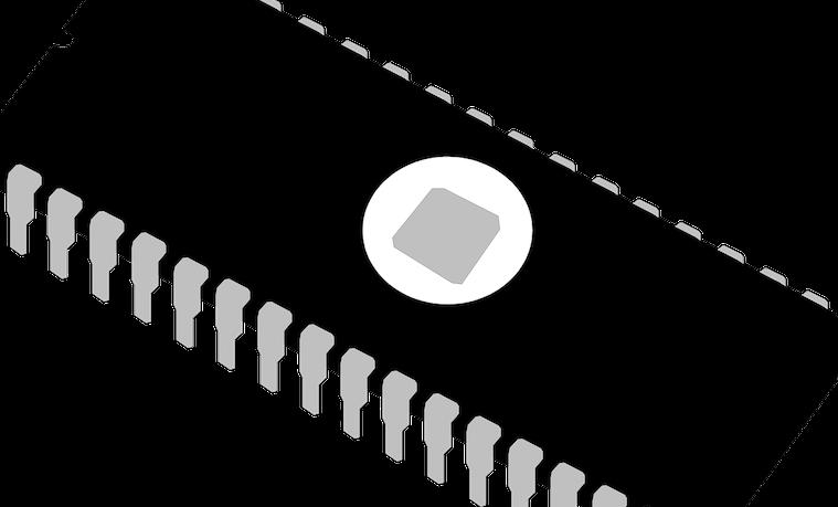 chip microchip
