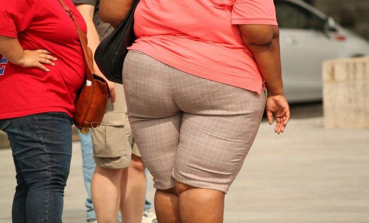 obesidad obesos FAO