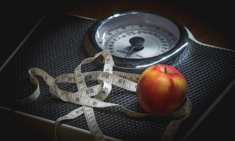 obesidad FAO obeso