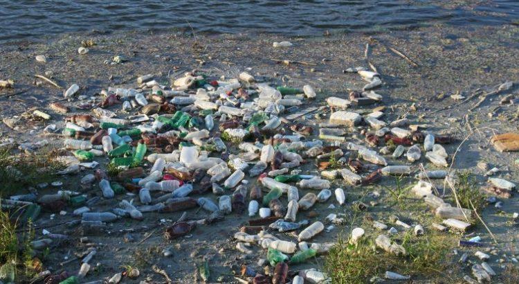 Toneladas de plástico son halladas en un archipiélago en el fin del mundo