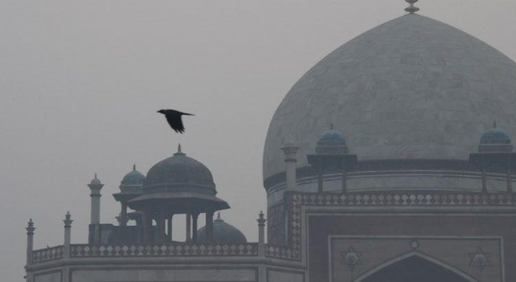 La contaminación ambiental de Nueva Delhi, la muerte a fuego lento