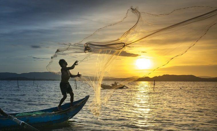 La acuicultura ecológica, una alternativa ante la demanda creciente de pescado