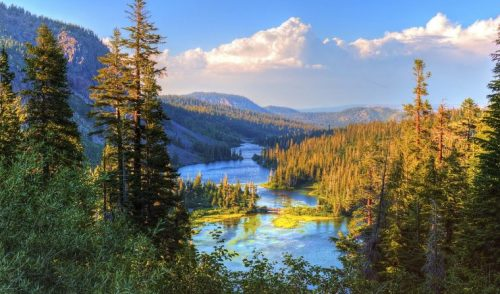 El Desafío de los Jueces con el conocimiento ambiental