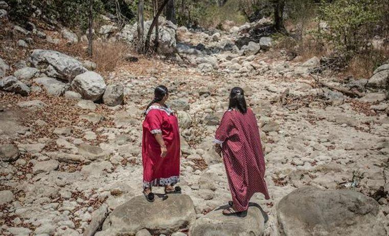 Defensoras de la tierra y el medio ambiente: voces silenciadas