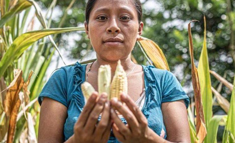 Alimentación, crisis climática y recursos naturales