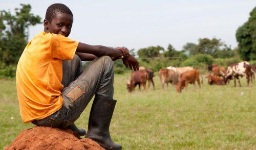 Cambio climático, un problema de los jóvenes