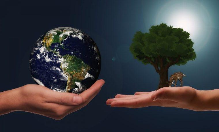 Rol del lenguaje en la formulación de las alternativas al desarrollo