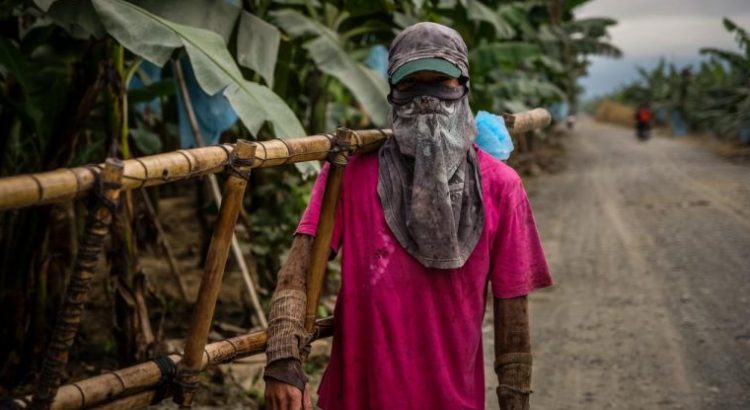 Los trabajadores del sector alimentario, al frente de la crisis del coronavirus