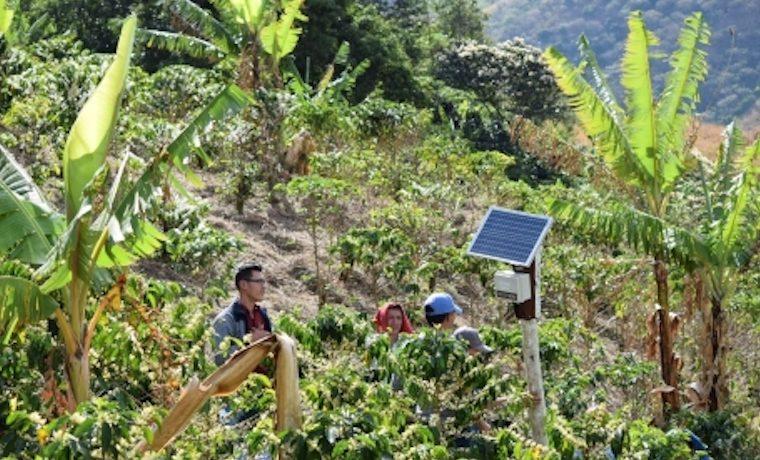 El café colombiano tradicional… con un toque juvenil