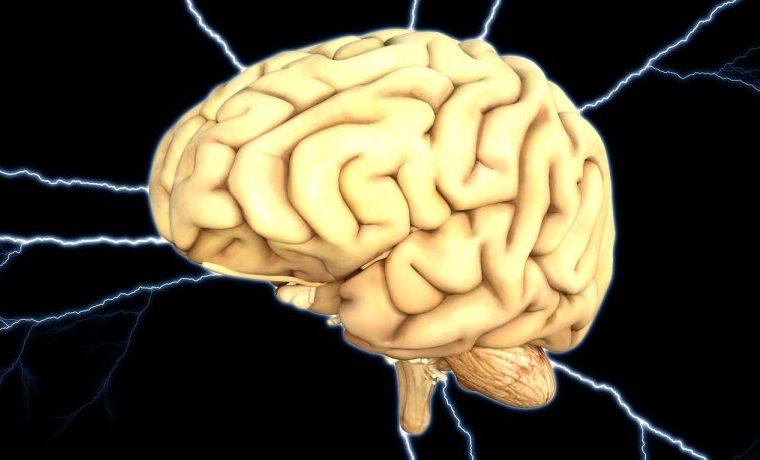 mente mentalidad cerebro