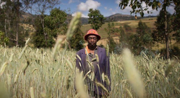 Romper el círculo vicioso del hambre y los conflictos
