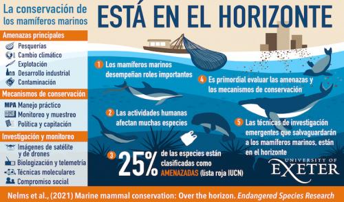 Un llamado a la acción: Las amenazas globales sobre los mamíferos marinos y ¿qué podemos hacer?