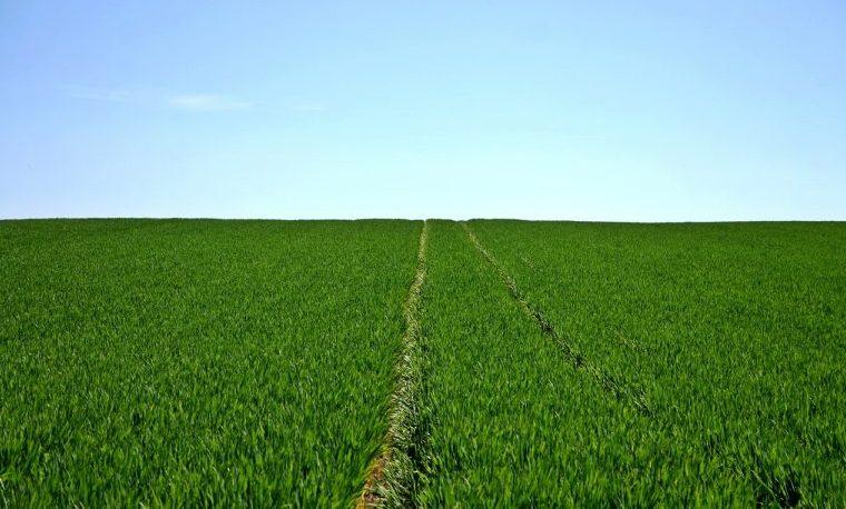 tenencia de la tierra land agro